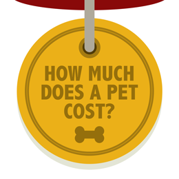 The Cost of Keeping a Pet